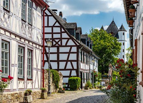 Wentzel Dr. Homes Shop Wiesbaden/Rheingau