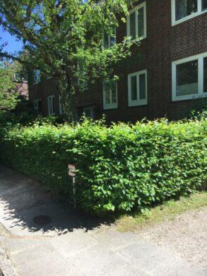 Schöne Wohnung in Elbnähe, Albertiweg 7<br>22605 Hamburg<br>Etagenwohnung